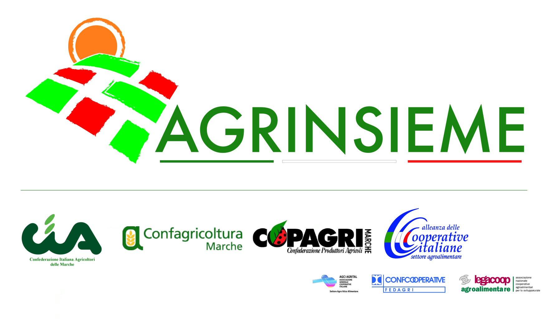 Logo agrinsieme + Associazioni 2