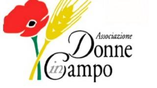 Donne in Campo Regionale Marche